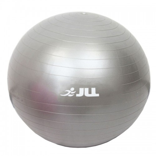 gym ball 55cm silver
