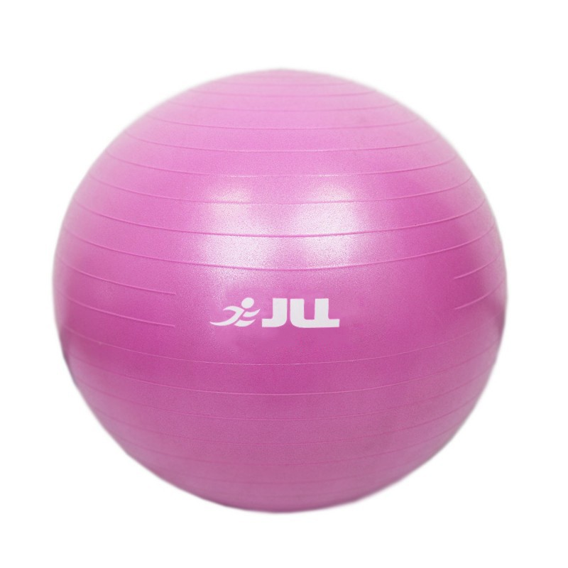 Exercise Ball 75cm Anti Burst: JLL Fitness Gym Ball (75cm)