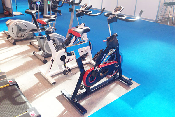 ic300 indoor bikes