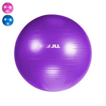 Fitness Gym Ball (75cm) - Purple